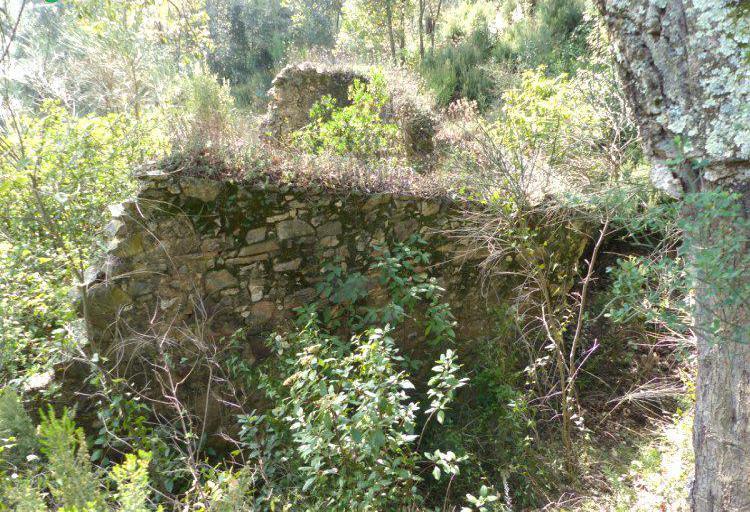Venta de finca de bosque con ruinas en girona