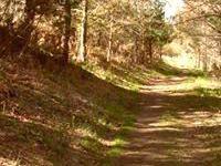Venta de terreno de monte en asturias