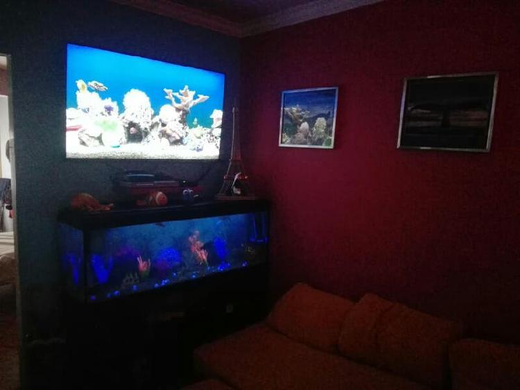 Cambio acuario de 300 litros