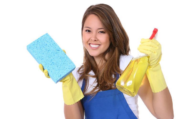 Limpieza por horas dias por semana