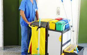 Labores domesticas limpieza plancha.
