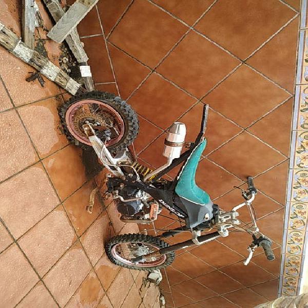 Pit bike orion 125 4t