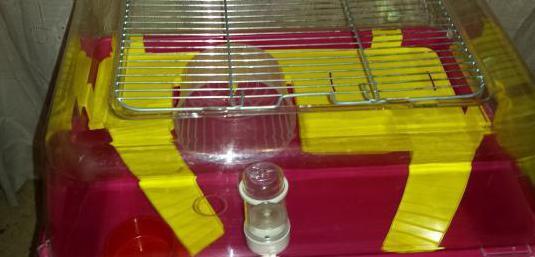 Jaula urna para hamster o rarones o cobaya