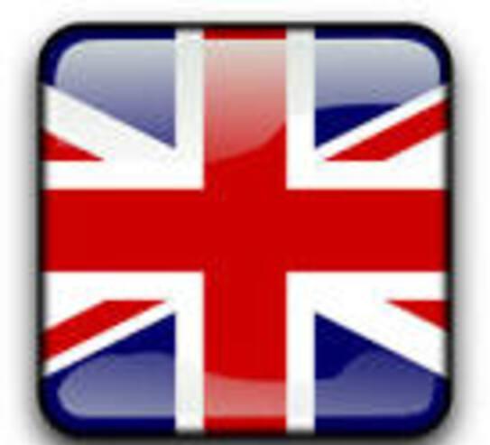 Clases de inglés por skype o zoom profesora nativa