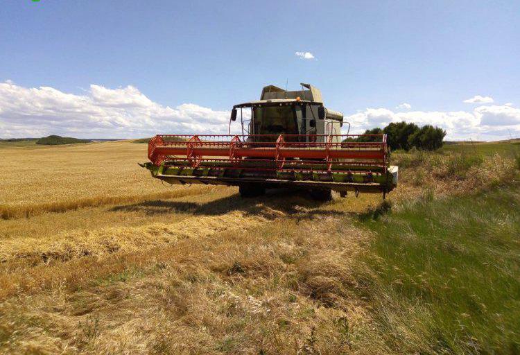 Trabajos agrícolas en navarra