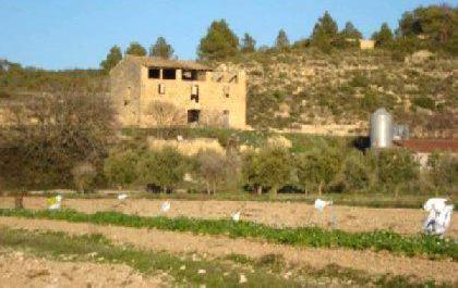 Venta de finca para turismo rural en tarragona