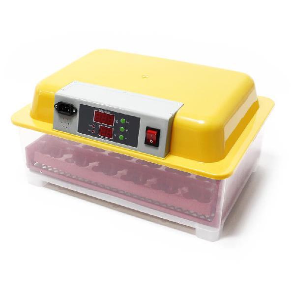 Incubadora automática capacidad para 24 huevos