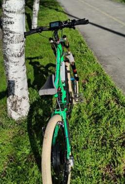 Bicicleta eléctrica downhill 90kmh