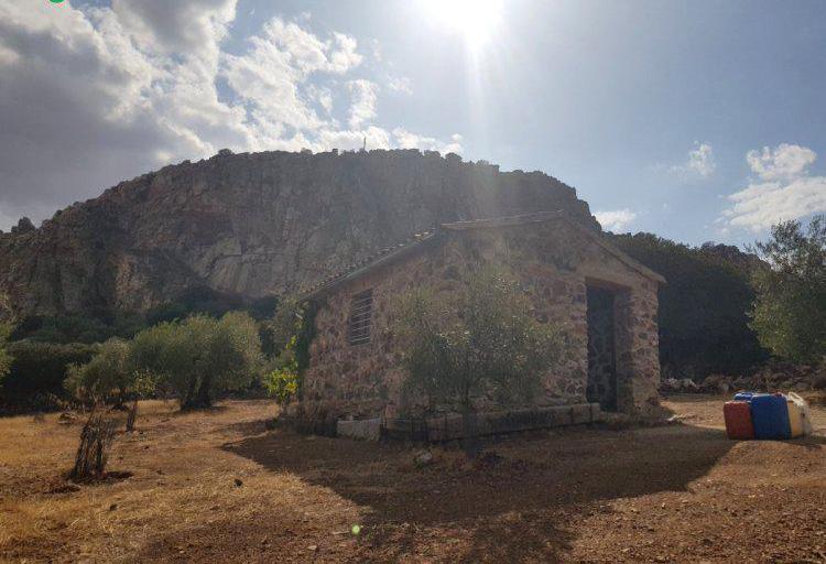 Venta de Finca de olivar con merendero en Córdoba