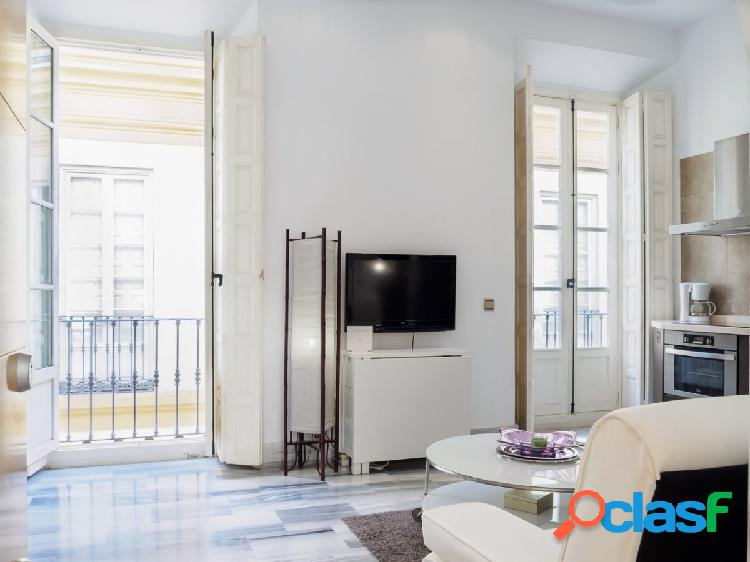 Magnifico apartamento en el centro histórico de málaga