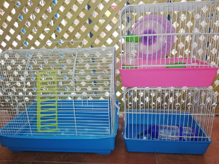 Jaula y accesorios para roedores