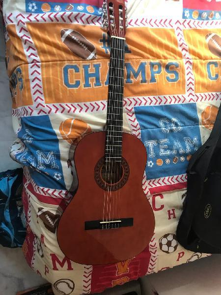Guitarra stagg