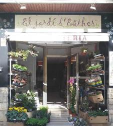 Traspaso tienda floristeria