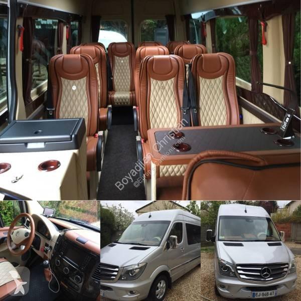 Autocar Mercedes de turismo International Sprinter EVOBUS