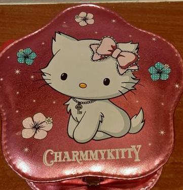 Cofre de color rosa y accesorios