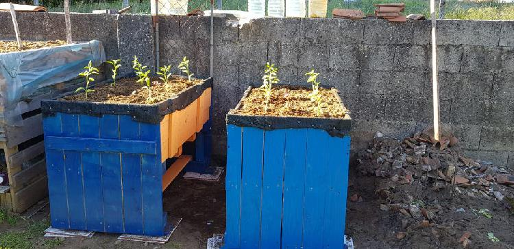 Mesas de cultivo para terrazas