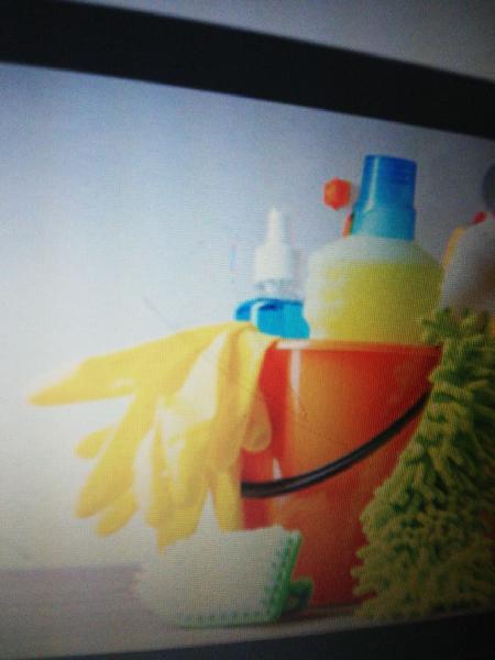 Servicios mantenimiento limpieza hogar
