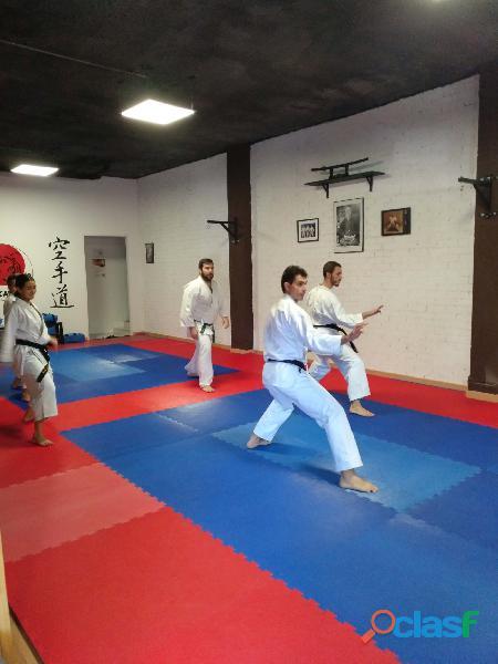 Clases online de karate