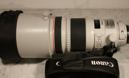 Canon ef 300mm f 2.8 l is ii usm