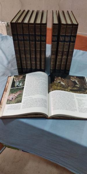 Enciclopedia fauna salvat