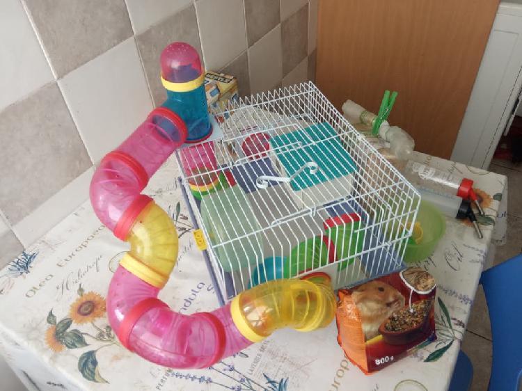 Jaula hamster + serrín