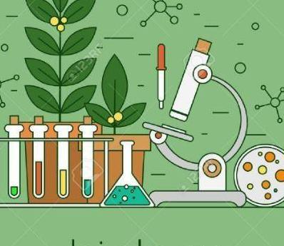 Clases particulares ciencias