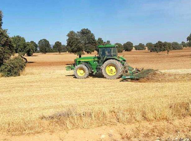 Trabajos agrícolas en ciudad real