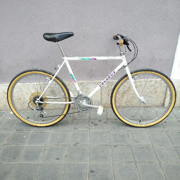 Mountain bike clásica