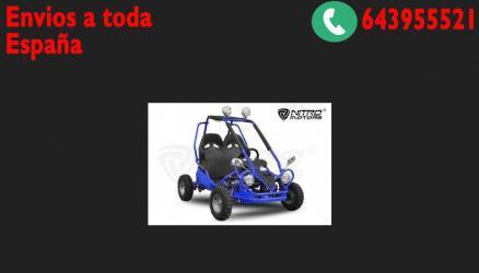 Buggy 50cc 4t r6 2 plazas