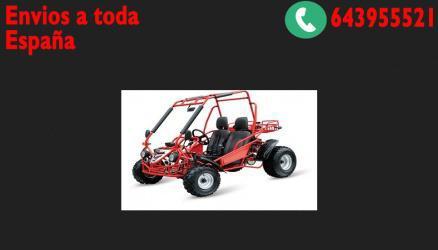 Buggy maxi 200cc automático cvt 4t r10 automatico