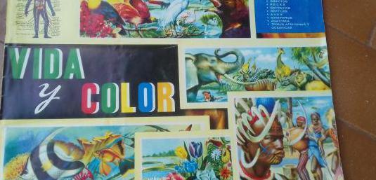 """Lbum """"vida y color"""""""