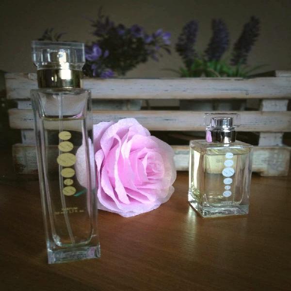 Elige tú perfume favorito