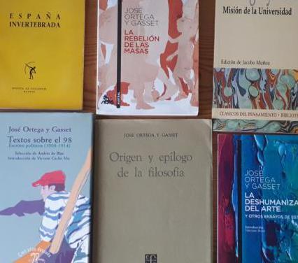 Lote 12 libros ortega y gasett