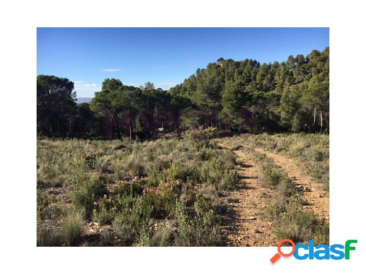 Zona Crta. Biar Bañeres. Terreno rustico Paraje Humbria 11.500 €