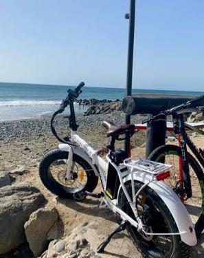 "Bici eléctrica plegable ""rawbike"""