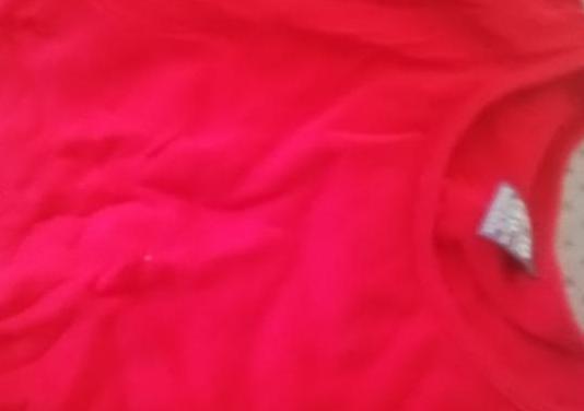 Zara camiseta 2e