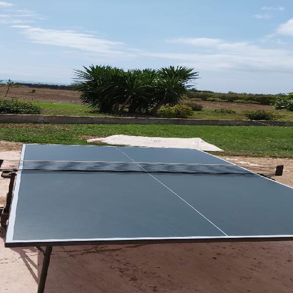 Mesa de ping pong decathlon
