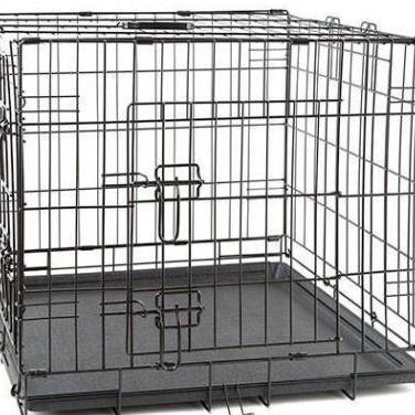 Protectora necesita transportines, jaula, lazo...