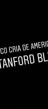 Cria american stanford blue