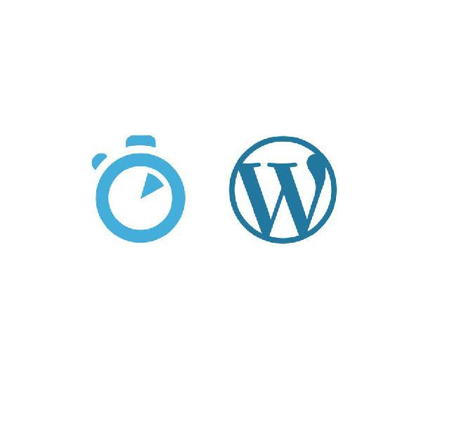 Optimización página web