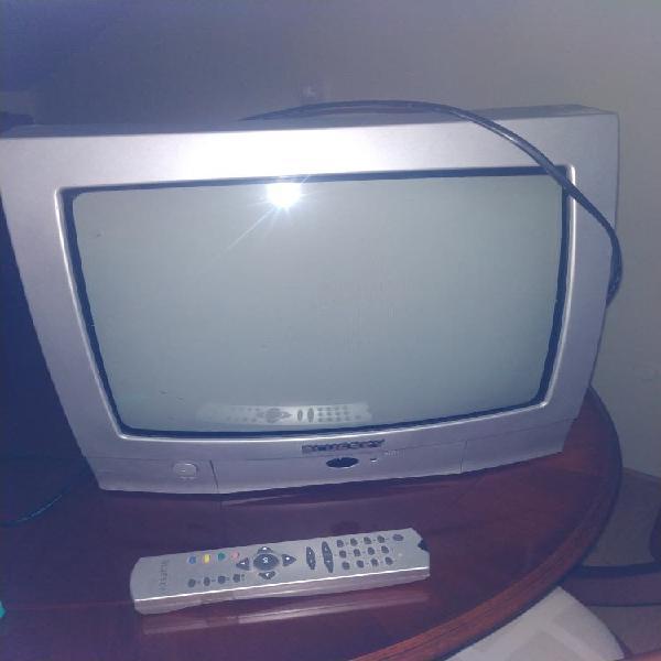 Televisión 14 pulgadas