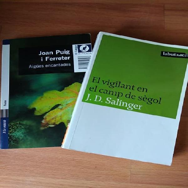 Lot 2 llibres per a joves