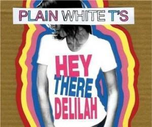 Plain white t's - hey there delilah - cd