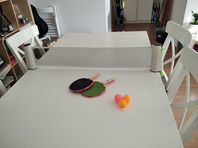 Rollnet. ping pong de interior