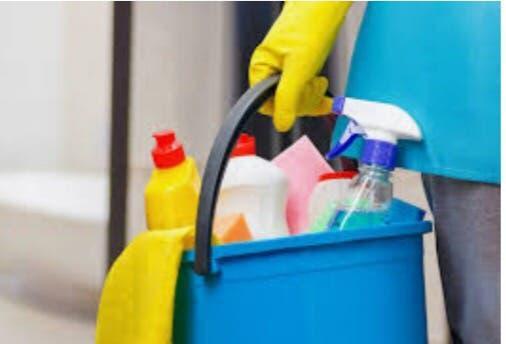 Chica limpieza y plancha