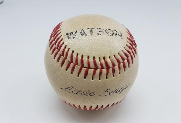 Pelota beisbol marca watson