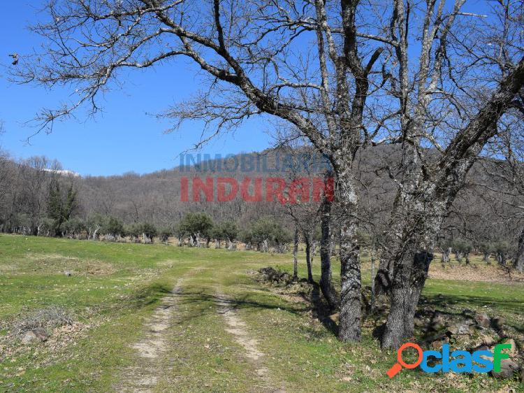 Finca de 8 hectáreas poblada de robles con una mobile home y varias construcciones situada en un entorno natural único de la comarca de la vera.