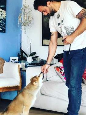 Adiestrador y educador canino profesional