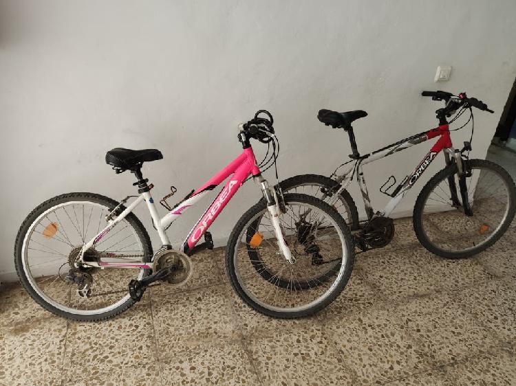 Lote de dos bicicletas de montaña orbea