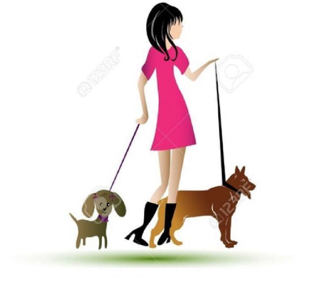 Paseadora o cuidadora de mascotas